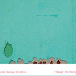 Through the Mirror by Lubos Soukup Ensemble, Animal Music 2013